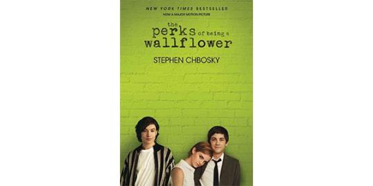 Photo: Product shot of The Perks of Being a Wallflower (via Amazon) 