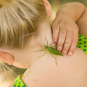 Photo: Bug on little girl's neck / Brook Rieman/Getty Images
