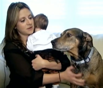 Photo: ABC News // Duke alerted his owners when their infant stopped breathing.