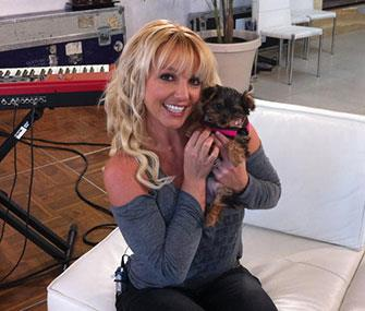 Photo: Twitter / Britney Spears poses with her new puppy, Hannah.