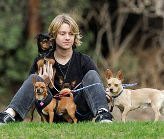 Photo: AP // Actor Lou Wegner, 16, poses with his rescued dogs.