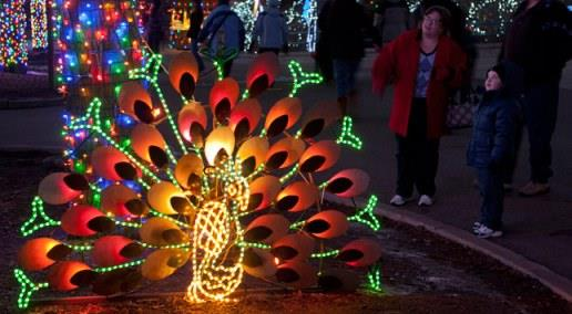 Photo: Denver Zoo // The Denver Zoo's beloved Zoo Lights event has been around for 22 years.