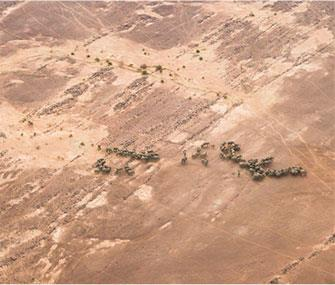 Photo: Chyulu Smith // Elephants in Mali's Gourma desert have adapted to living with little access to water