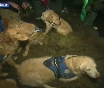 Photo: CNN via YouTube // Comfort dogs visit children in Newtown, Conn.
