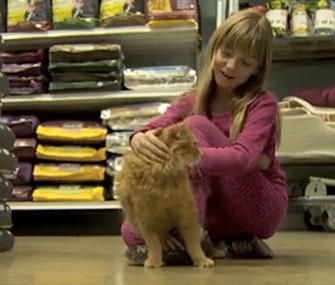 Photo: Timmy the cat was reunited with Talus Miller on Saturday / KATU