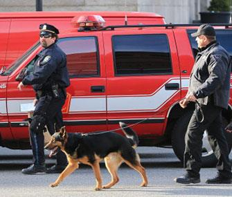 Photo: A dog helps police in Boston with their investigation after two explosions went off near the finish line of the Boston Marathon on Monday. / Boston Globe / Getty Images