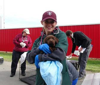 Photo: A member of the Texas A&M team holds a chocolate Lab puppy who they are treating. / Texas A&M Veterinary Emergency Team / Facebook