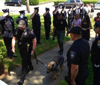 Photo: Plymouth Police Working Dog Foundation / Plymouth, Mass., police honor Kaiser, a K9 officer.