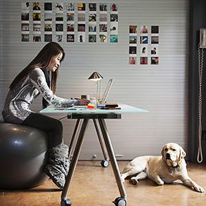 Photo: Take your pet to work day / Blend Images/Hill Street Studios