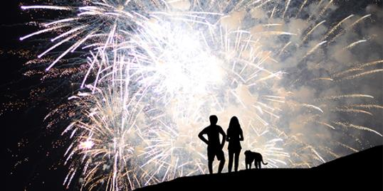 Help your pets during 4th of July fireworks / Simone Pievani/Getty Images