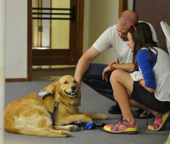 Photo: Two teams of comfort dogs spent the holiday weekend working in Arizona. / K-9 Parish Comfort Dogs / Facebook