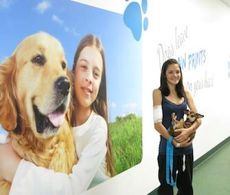 The Healing Paws program reunites longterm pediatric patients with their family pets. / Wolfson Children's Hospital / Healing Paws