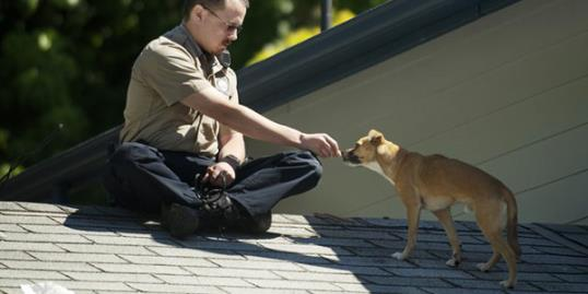 Office uses hotdog to rescue dog from roof / Troy Wayrynen/The Columbian