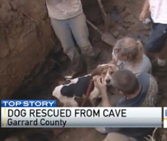 Photo: Rat the Coonhound raced to his owners when he was freed from a Kentucky cave. / WKYT