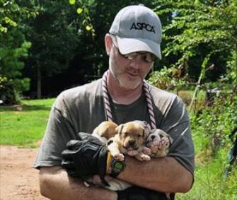 An official carries puppies who were rescued from a home in Alabama. / AP