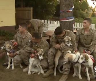 A group of National Guardsmen were reunited with an Afghan dog and her seven puppies on Wednesday. / CBS News