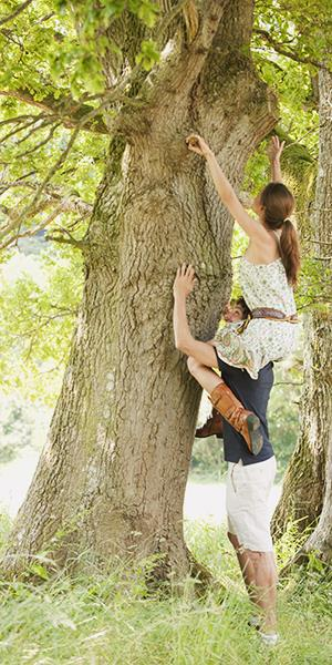 Photo: Guy helping girl up tree / Philip Lee Harvey/Getty Images