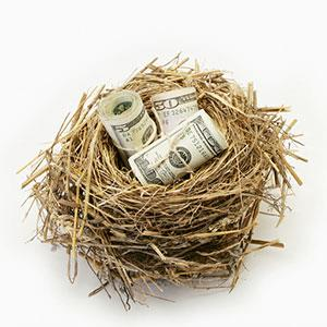 Image: Money in nest (© Steven Puetzer/Getty Images/Getty Images)