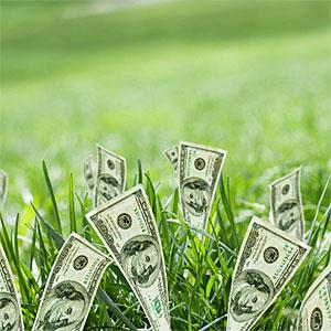 $100 bills growing in grass © REB Images, Blend Images, Getty Images