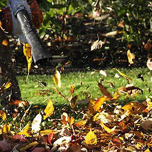 A leaf blower & autumn leaves (© Roger Whiteway/Getty Images)