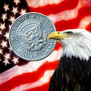 American Eagle © Steve Allen, Brandx Pictures, Photolibrary