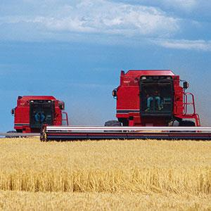 Combines in field copyright Mark Karrass, Corbis, Corbis