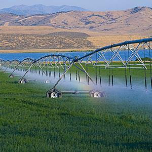 USA, Utah, sprinklers watering farm grass (© John Wang/Photodisc Red/Getty Images)