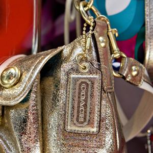 Coach handbags on display in the window of a Coach store in New York (Daniel Acker/Bloomberg via Getty Images)