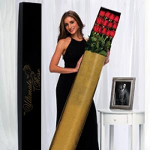 Woman holding a box of The Ultimate Rose's 6 foot roses (The Ultimate Rose)