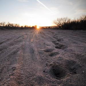 The dry Arkansas River bed in Garden City, Kansas ( Adam Reynolds/Corbis)