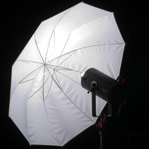 File photo of lighting equipment in a photo studio ( London/Alamy)