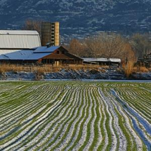 Credit: © Kirk Strickland/E+/Getty Images