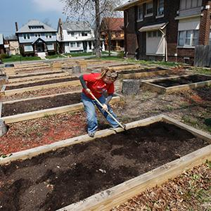 Kate Cramer-Herbst cleans out a vegetable box in Detroit (Carlos Osorio/AP)