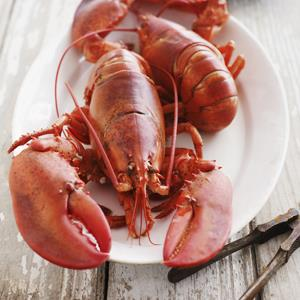 Lobster on a plate (© Alexandra Grablewski/Lifesize/Getty Images)