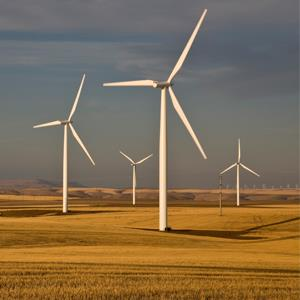 Wind turbines in harvested wheat field, Oregon
