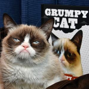 Grumpy Cat (© Amanda Edwards/WireImage/Getty Images)