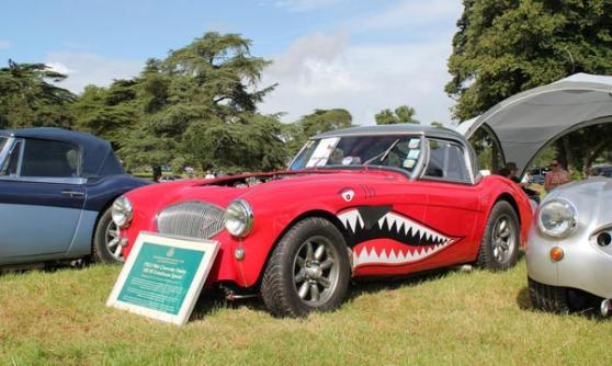 Chevrolet V8 Healey at Milton House (c) CJ Hubbard / Motoring Research