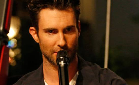 Adam Levine/WENN