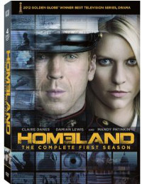 Homeland Security Showtime on Tv On Disc     Homeland    Is A Different Look At National Security