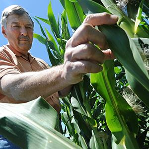 Credit: © T. Rob Brown/AP Photo
