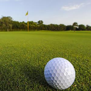 Credit: © Spaces Images/Getty ImagesCaption: Golf ball on empty putting green