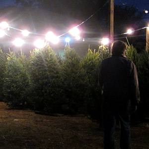 Credit: Bruce Smith/AP