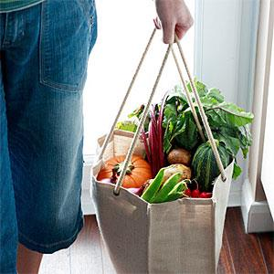Woman carrying eco friendly shopping bag full of vegetables, low section © Harrison Eastwood, Digital Vision, Getty Images