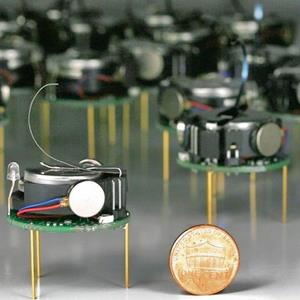 One of the tiny Kilobot robots that make up the swarm. © Michael Rubenstein/Harvard University