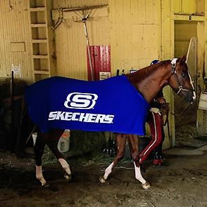 Credit: © Rob Carr/Getty ImagesCaption: Kentucky Derby and Preakness winner California Chrome is walked in the barn following a workout in preparation for the 146th running of the Belmont Stakes at Belmont Park on June 6, 2014 in Elmont, New York