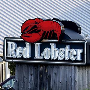 Credit: © James A. Finley/AP