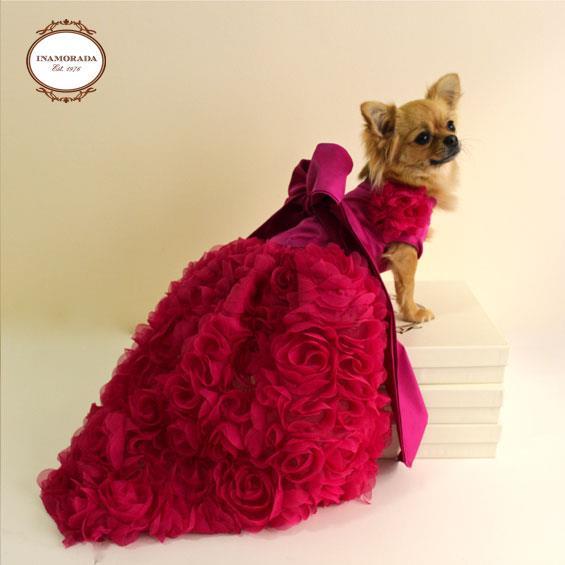 vestiti per cani abbigliamento per cani : Marca italiana Inamorada, com pe?as ? venda no e-commerce brasileiro ...