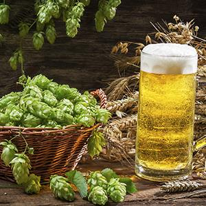 Basket full of hops and a cold beer © Shaiith/Getty Images