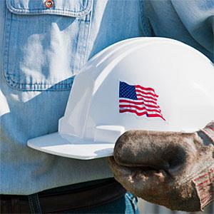 Man holding hardhat © Tetra Images, Tetra images, Getty Images