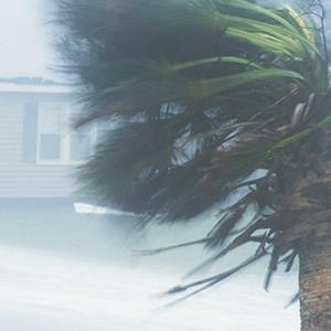 Hurricane winds © Exactostock/SuperStock